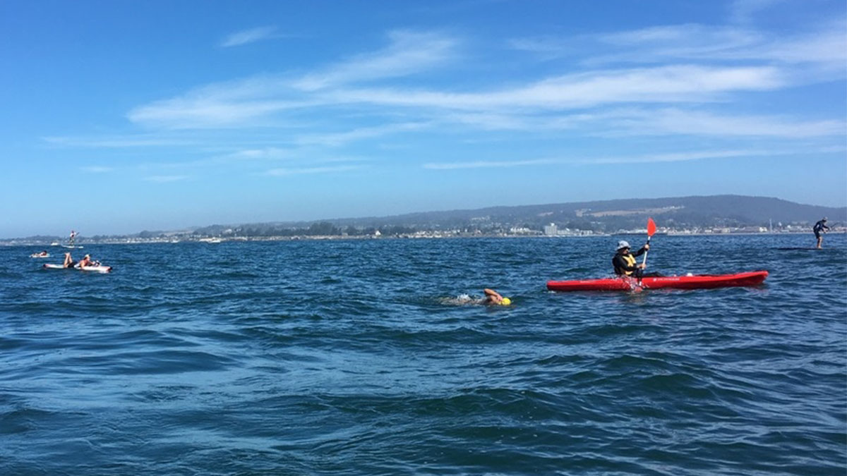 open-water swim, Monterrey Bay, endurance