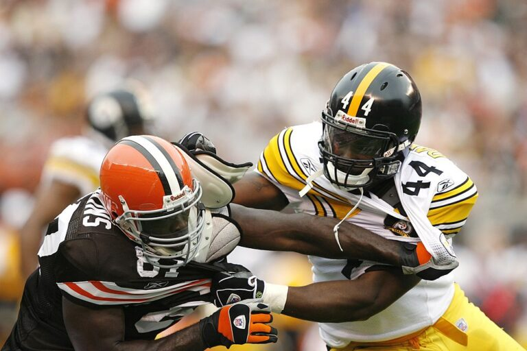 CLEVELAND - SEPTEMBER 9: Najeh Davenport #44 of the Pittsburgh Steelers blocks Darnell Dinkins #87 of the Cleveland Browns on September 9, 2007 at Cleveland Browns Stadium in Cleveland, Ohio. (Photo by Joe Robbins/Getty Images)